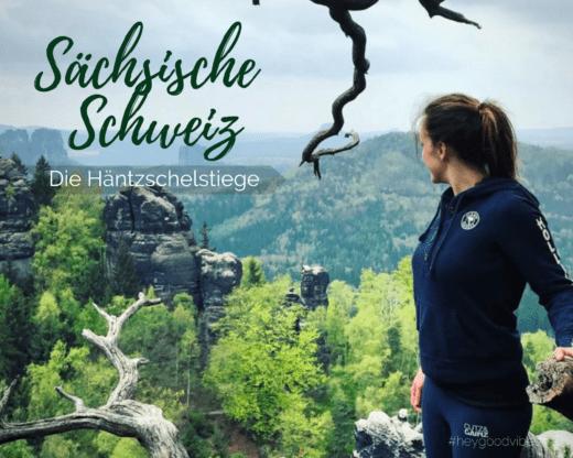 Sächsische Schweiz Häntzschelstiege