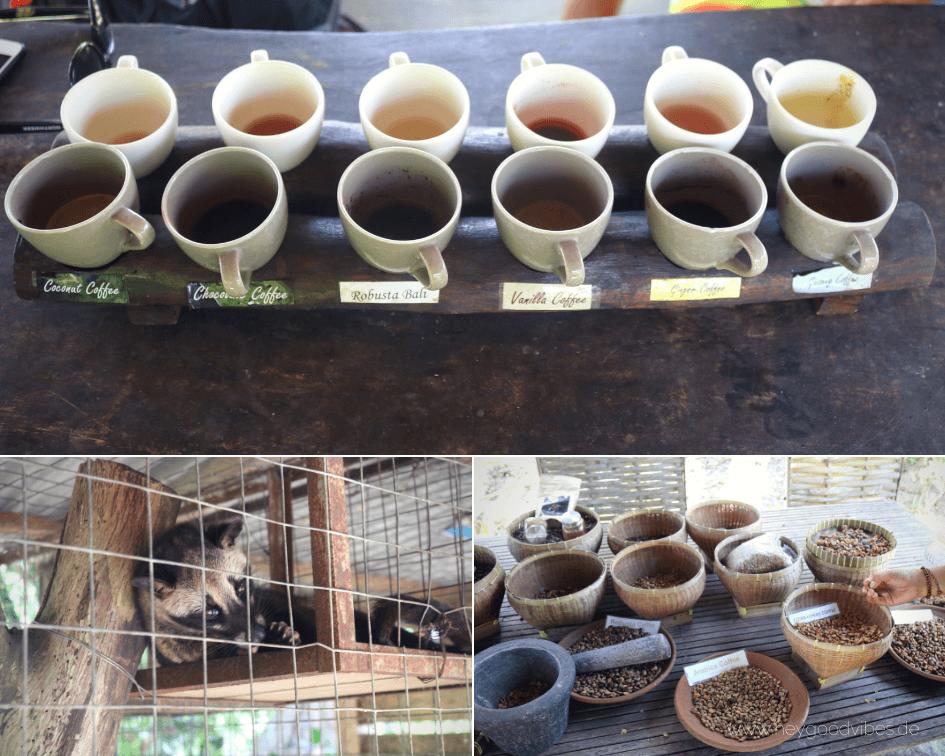 Luwak Kaffee